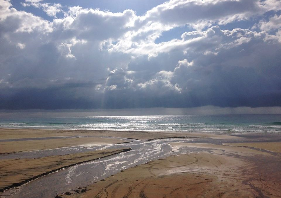 Saltwater Therapy – Mental Health Soup for the Soul